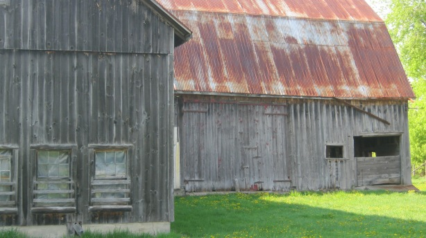Barn along Junetown Rd.